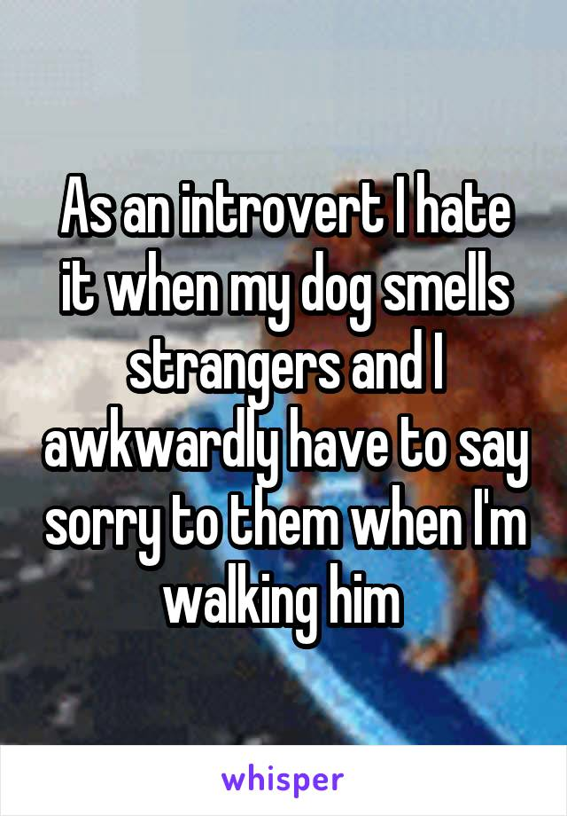 As an introvert I hate it when my dog smells strangers and I awkwardly have to say sorry to them when I'm walking him