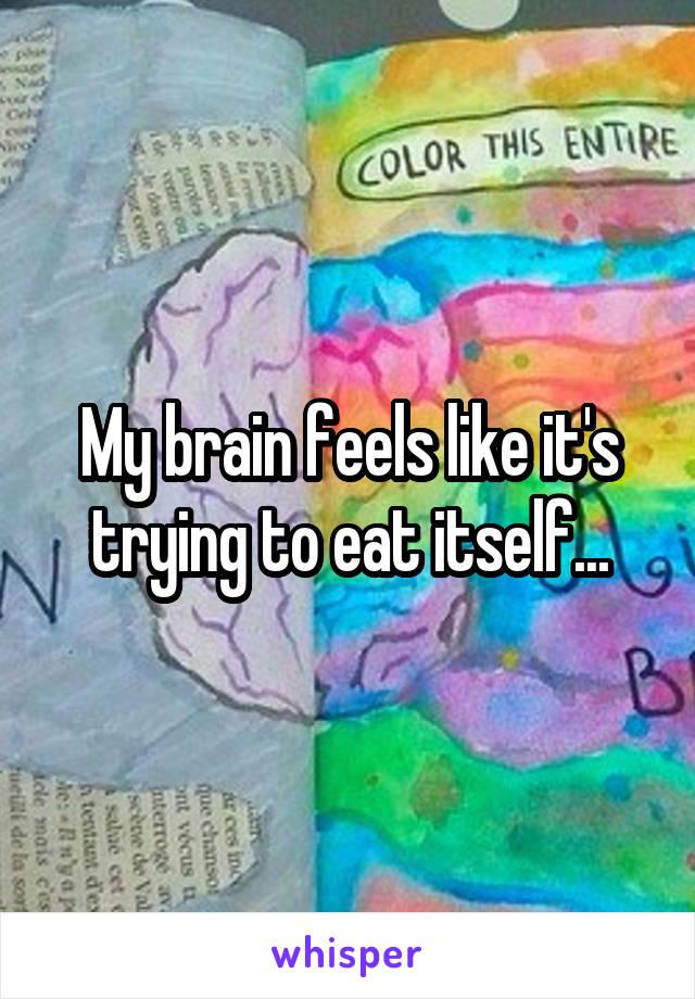 My brain feels like it's trying to eat itself...