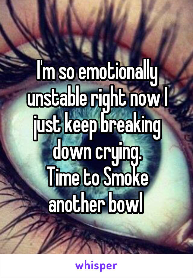 I'm so emotionally unstable right now I just keep breaking down crying. Time to Smoke another bowl