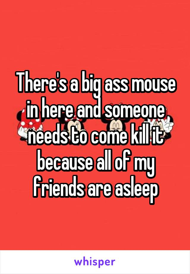 There's a big ass mouse in here and someone needs to come kill it because all of my friends are asleep