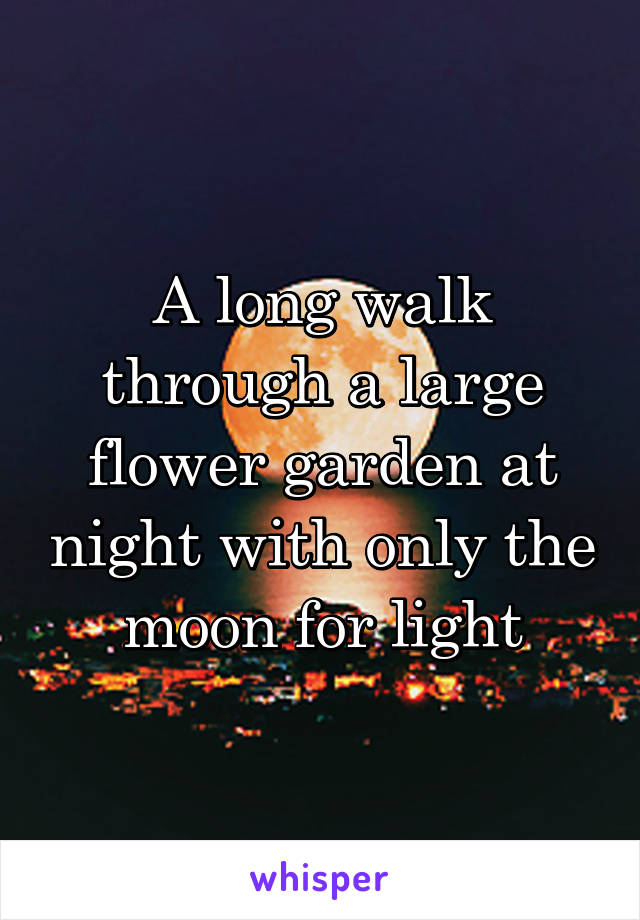 A long walk through a large flower garden at night with only the moon for light