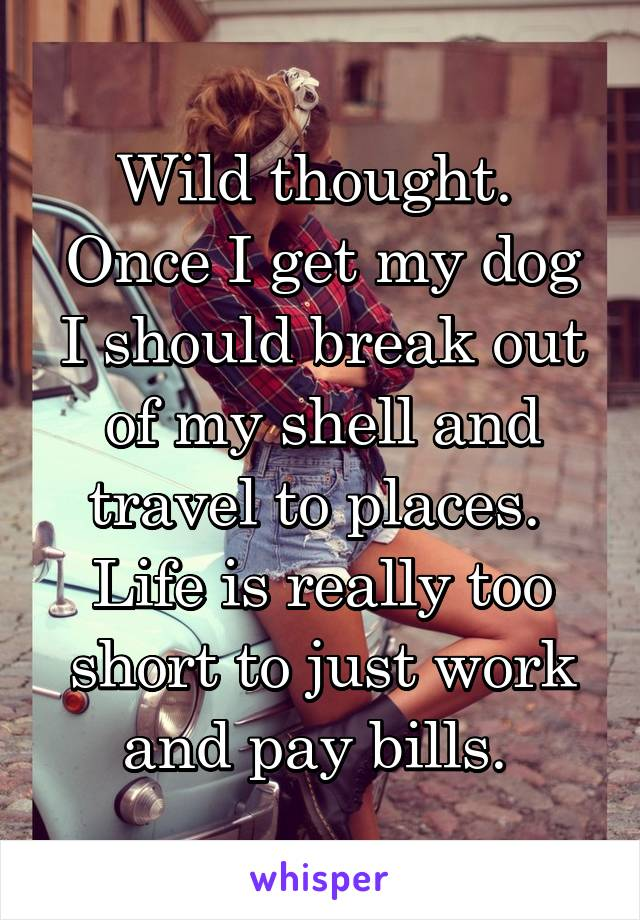 Wild thought.  Once I get my dog I should break out of my shell and travel to places.  Life is really too short to just work and pay bills.