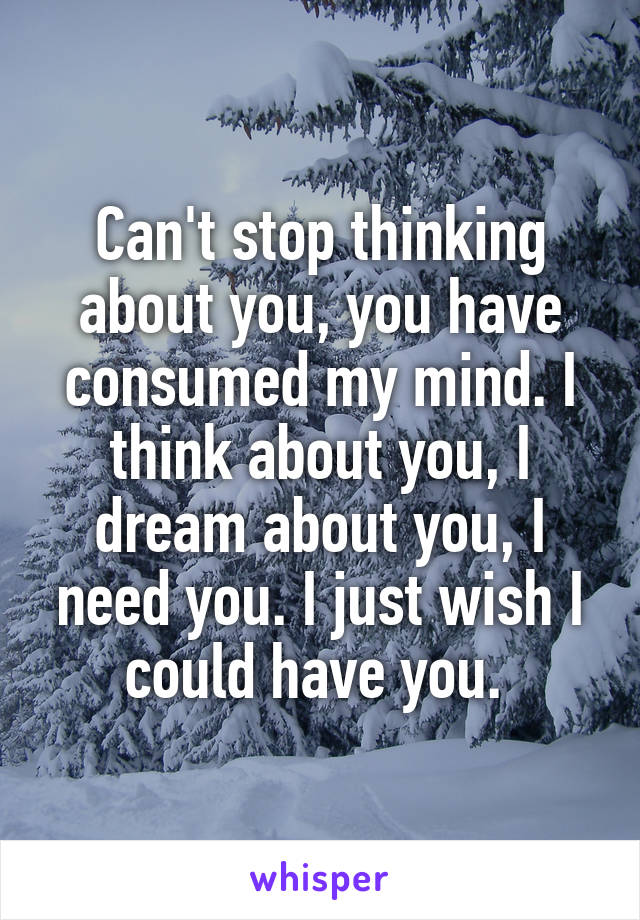 Can't stop thinking about you, you have consumed my mind. I think about you, I dream about you, I need you. I just wish I could have you.