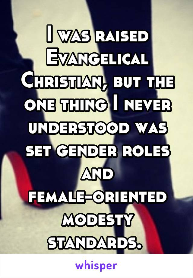 I was raised Evangelical Christian, but the one thing I never understood was set gender roles and female-oriented modesty standards.