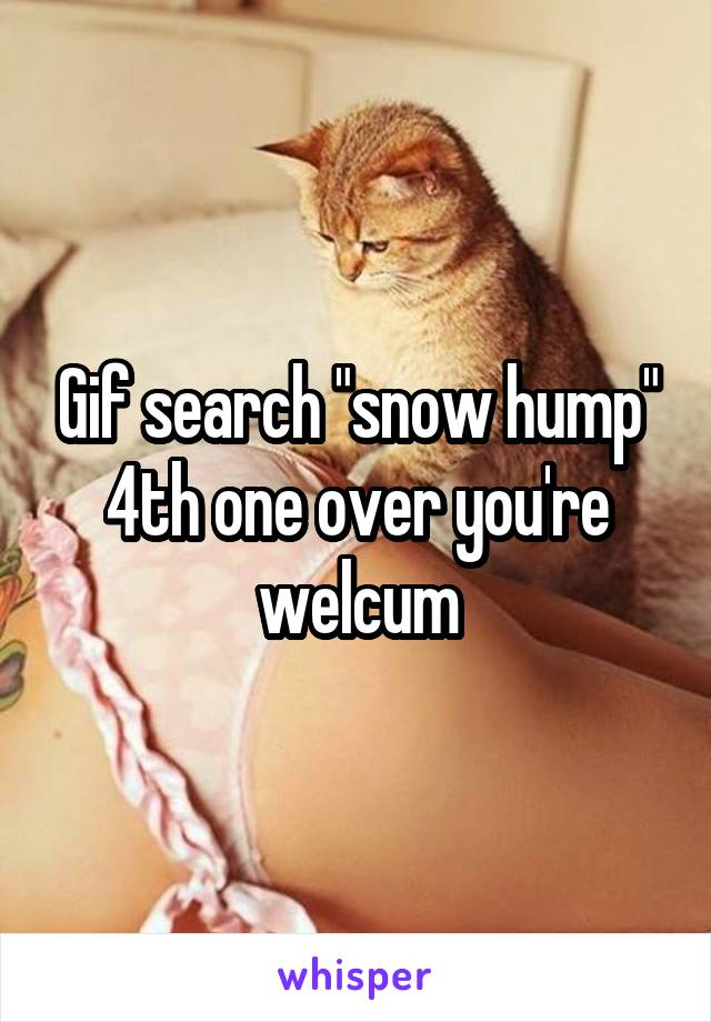"""Gif search """"snow hump"""" 4th one over you're welcum"""