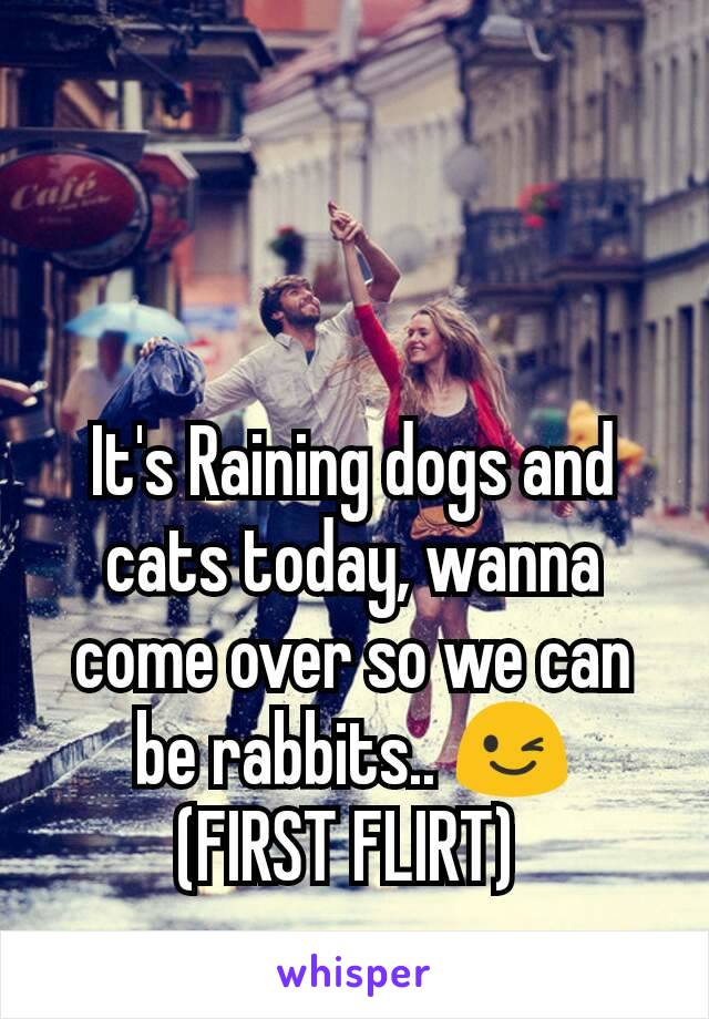 It's Raining dogs and cats today, wanna come over so we can be rabbits.. 😉 (FIRST FLIRT)