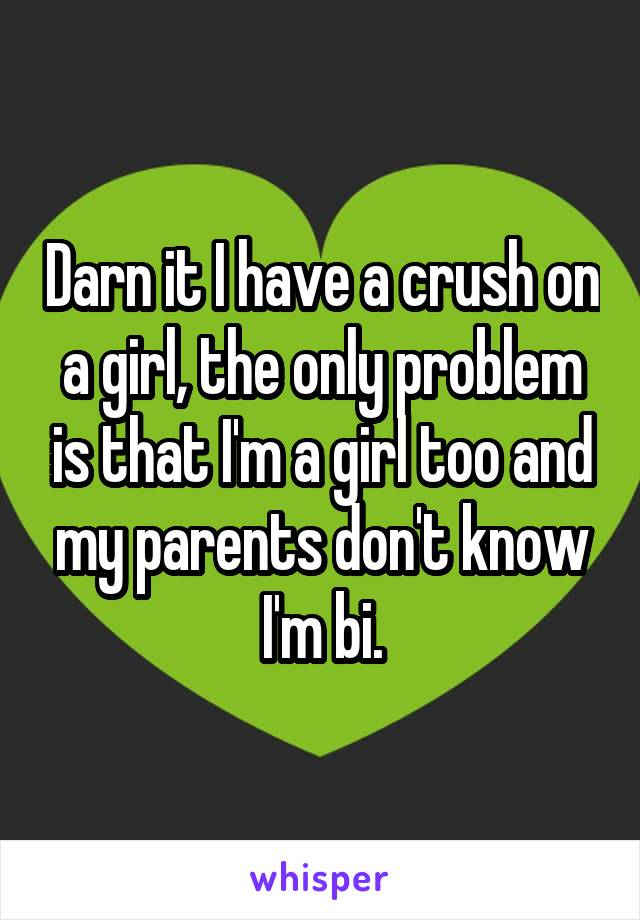 Darn it I have a crush on a girl, the only problem is that I'm a girl too and my parents don't know I'm bi.
