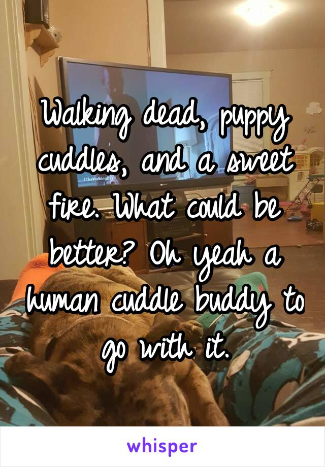 Walking dead, puppy cuddles, and a sweet fire. What could be better? Oh yeah a human cuddle buddy to go with it.