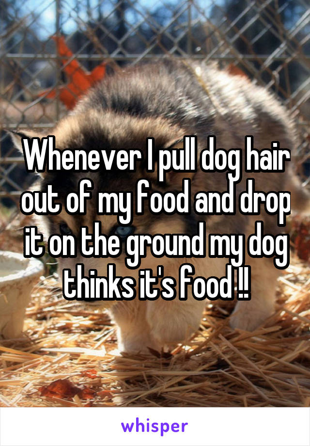 Whenever I pull dog hair out of my food and drop it on the ground my dog thinks it's food !!