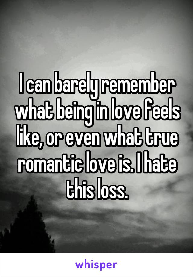 I can barely remember what being in love feels like, or even what true romantic love is. I hate this loss.
