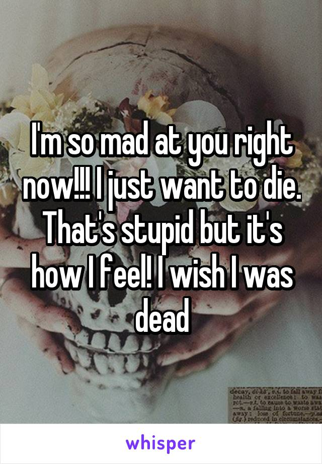 I'm so mad at you right now!!! I just want to die. That's stupid but it's how I feel! I wish I was dead