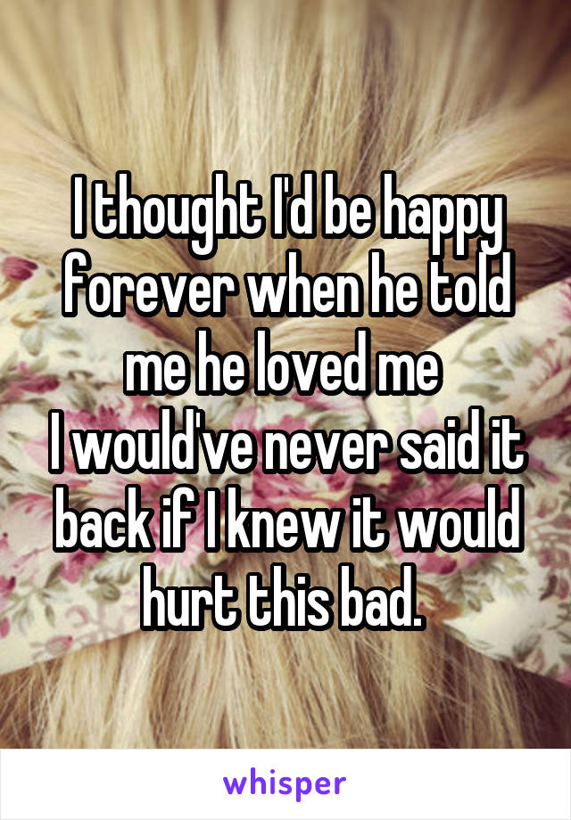 I thought I'd be happy forever when he told me he loved me  I would've never said it back if I knew it would hurt this bad.