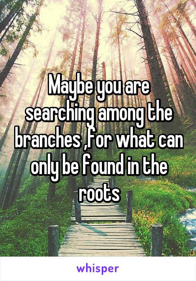 Maybe you are searching among the branches ,for what can only be found in the roots