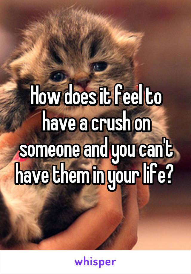How does it feel to have a crush on someone and you can't have them in your life?