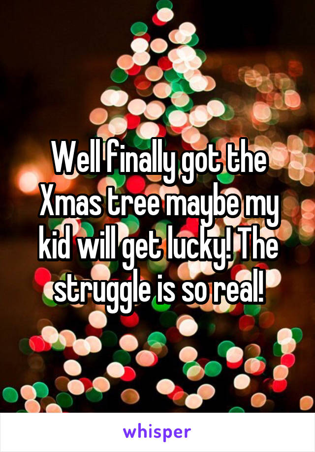 Well finally got the Xmas tree maybe my kid will get lucky! The struggle is so real!