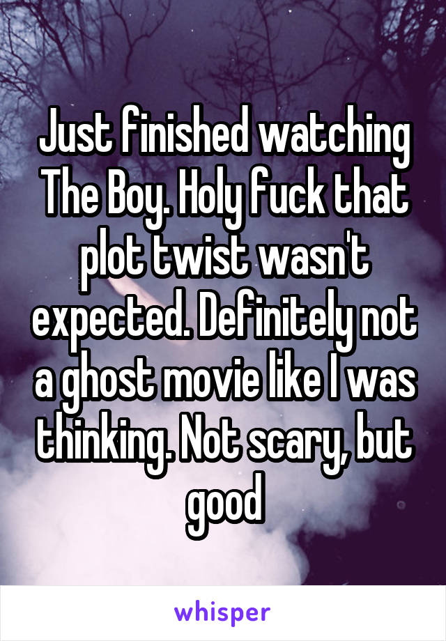 Just finished watching The Boy. Holy fuck that plot twist wasn't expected. Definitely not a ghost movie like I was thinking. Not scary, but good