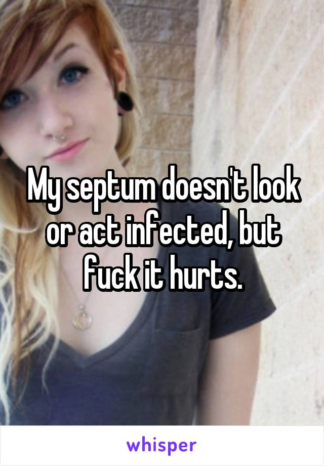 My septum doesn't look or act infected, but fuck it hurts.