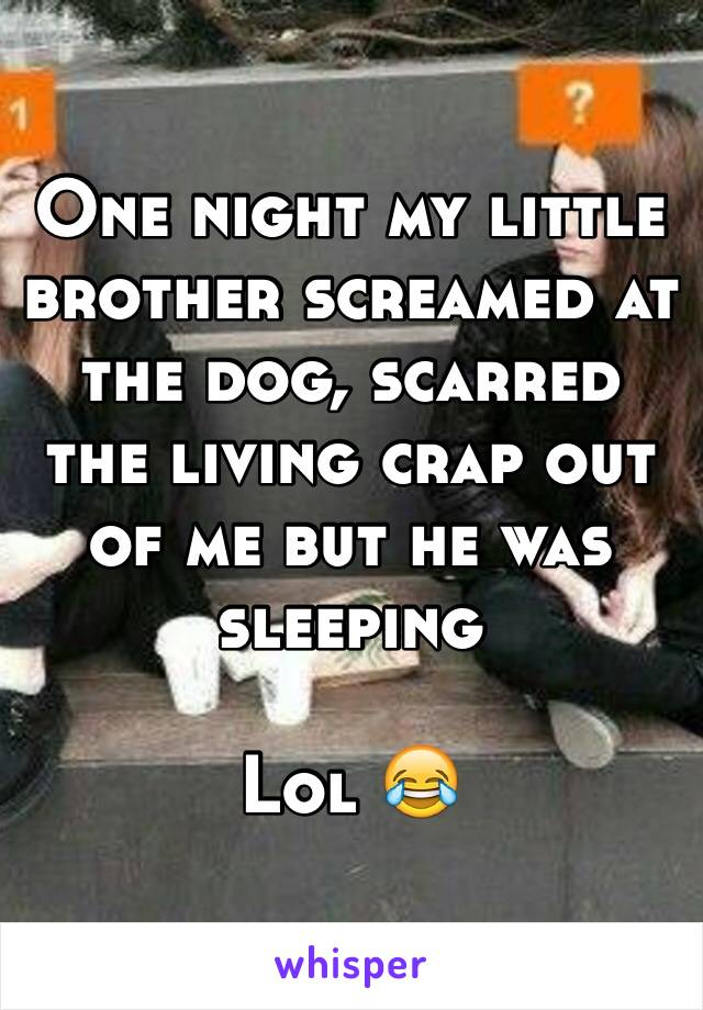 One night my little brother screamed at the dog, scarred the living crap out of me but he was sleeping  Lol 😂