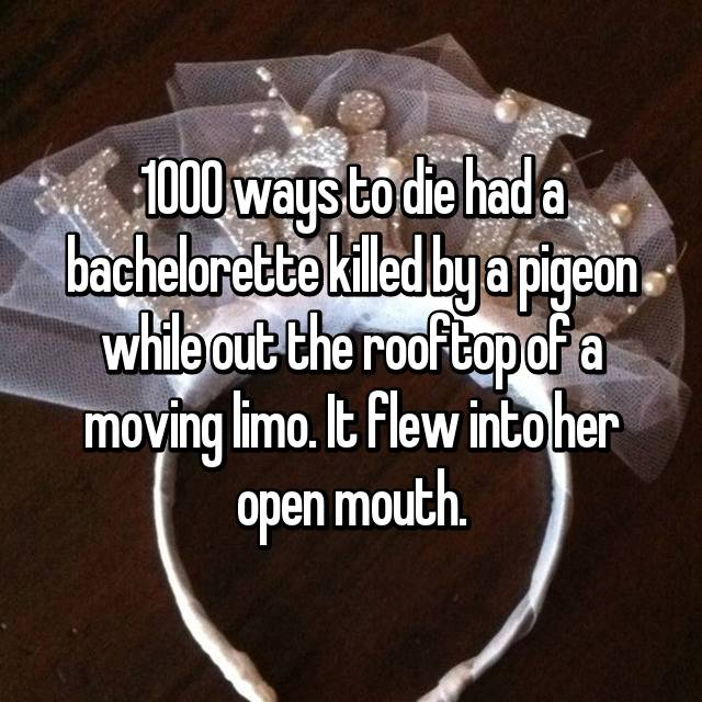 1000 ways to die had a bachelorette killed by a pigeon while out the rooftop of a moving limo. It flew into her open mouth.