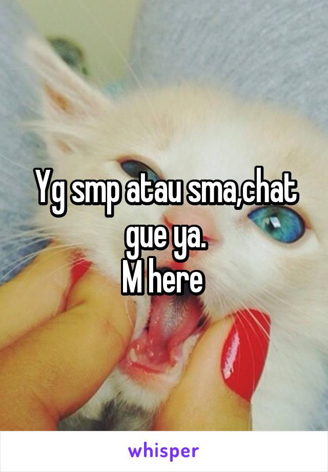 Yg smp atau sma,chat gue ya. M here