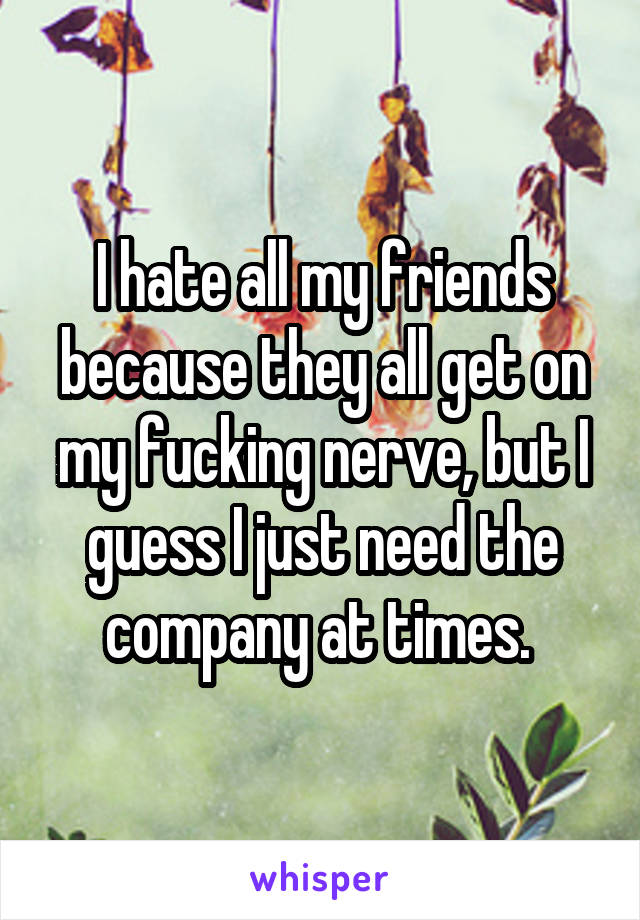 I hate all my friends because they all get on my fucking nerve, but I guess I just need the company at times.