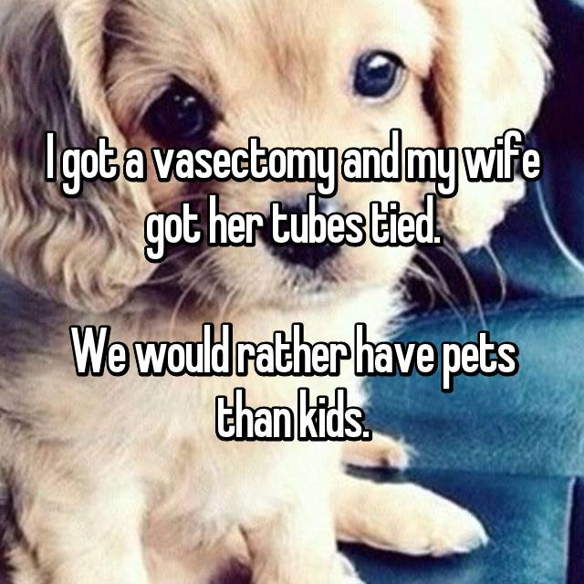 I got a vasectomy and my wife got her tubes tied.  We would rather have pets than kids.