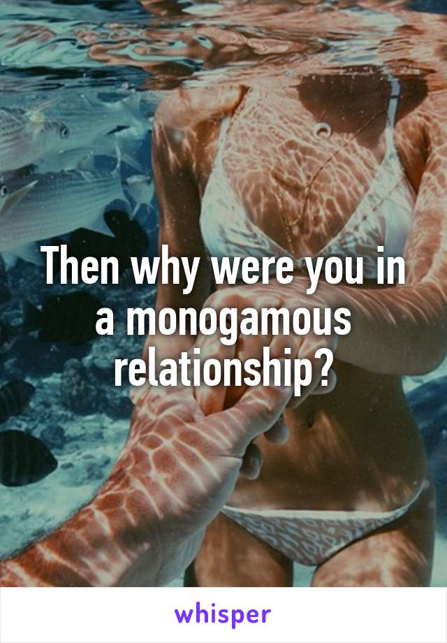 Then why were you in a monogamous relationship?