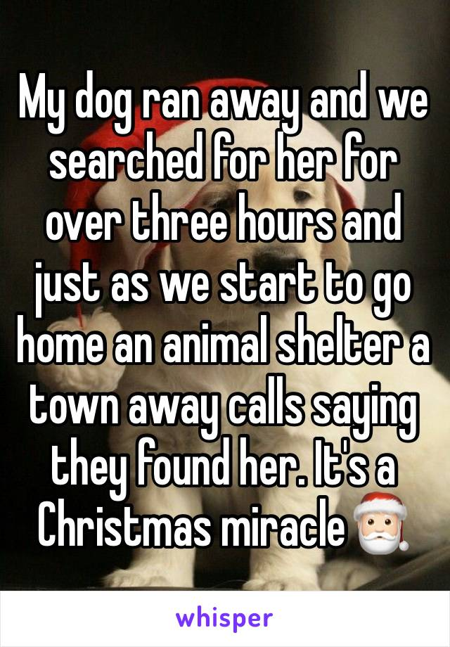 My dog ran away and we searched for her for over three hours and just as we start to go home an animal shelter a town away calls saying they found her. It's a Christmas miracle🎅🏻