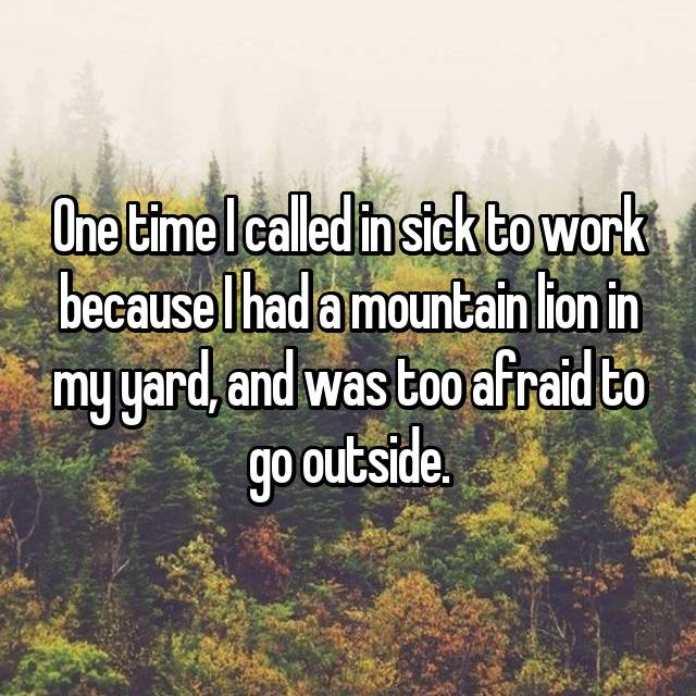 One time I called in sick to work because I had a mountain lion in my yard, and was too afraid to go outside.