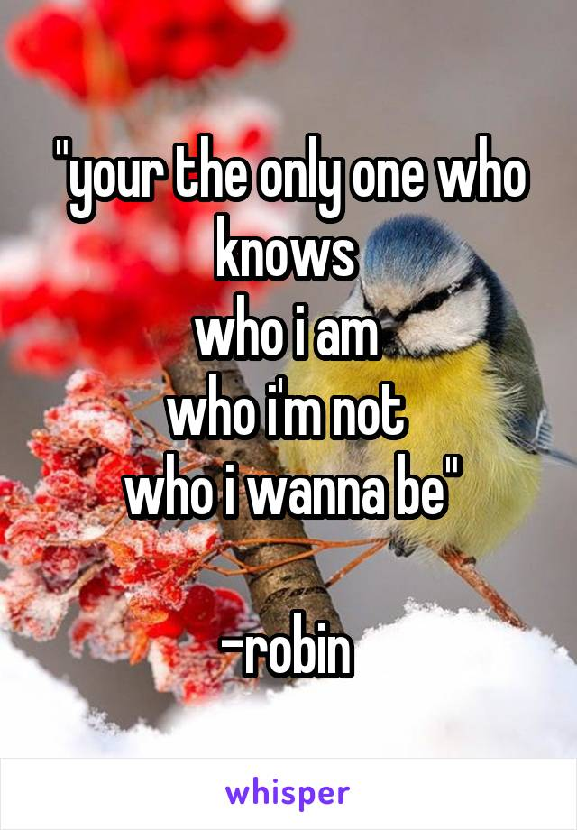 """""""your the only one who knows  who i am  who i'm not  who i wanna be""""  -robin"""