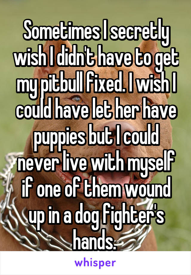 Sometimes I secretly wish I didn't have to get my pitbull fixed. I wish I could have let her have puppies but I could never live with myself if one of them wound up in a dog fighter's hands.