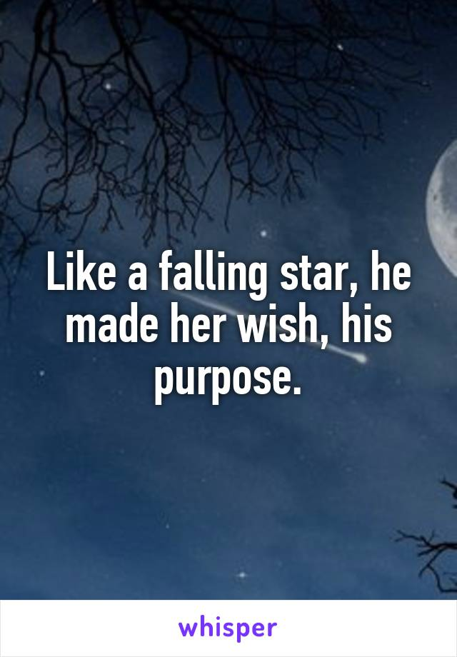 Like a falling star, he made her wish, his purpose.