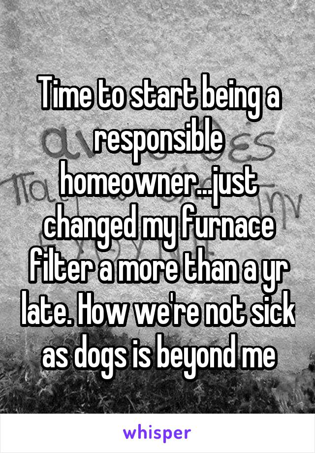 Time to start being a responsible homeowner...just changed my furnace filter a more than a yr late. How we're not sick as dogs is beyond me