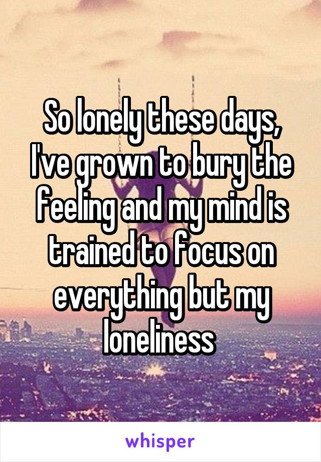 So lonely these days, I've grown to bury the feeling and my mind is trained to focus on everything but my loneliness