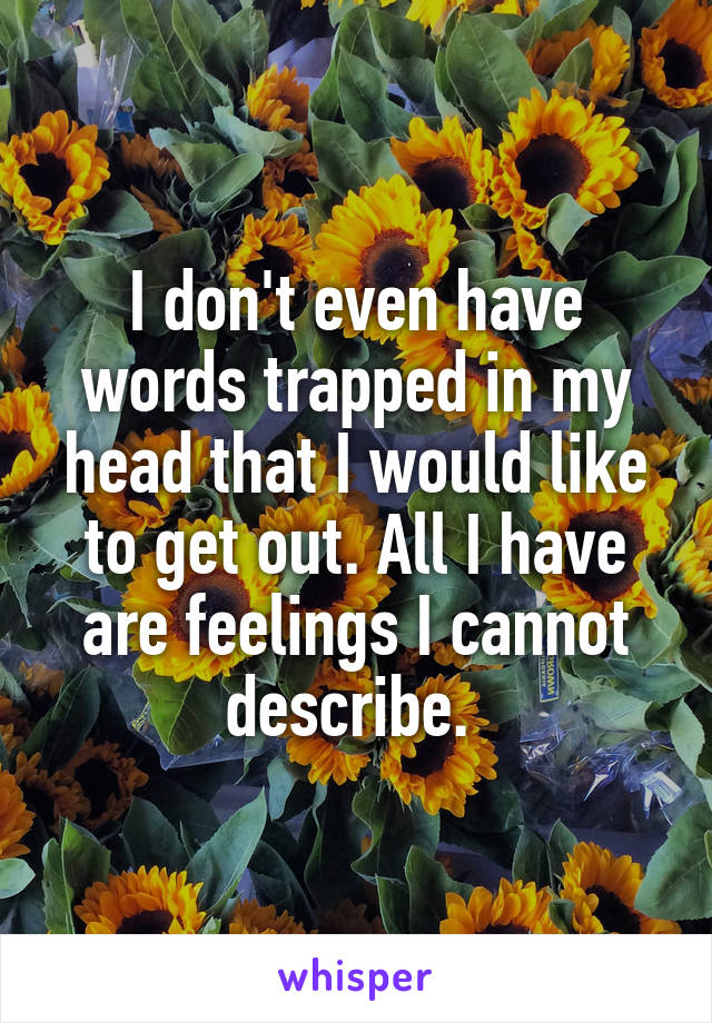 I don't even have words trapped in my head that I would like to get out. All I have are feelings I cannot describe.