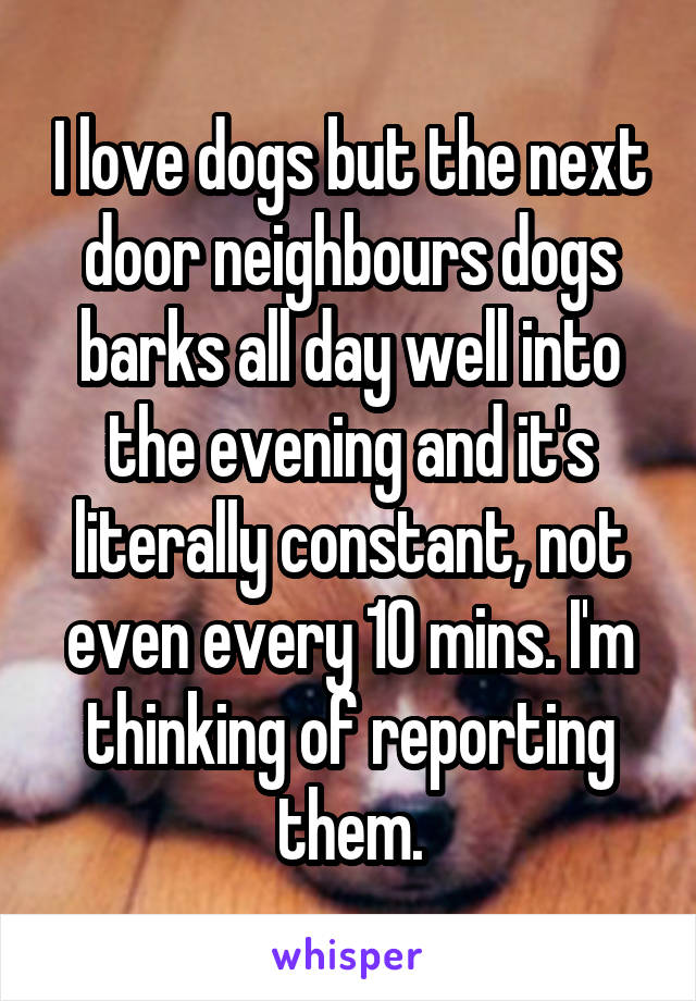 I love dogs but the next door neighbours dogs barks all day well into the evening and it's literally constant, not even every 10 mins. I'm thinking of reporting them.