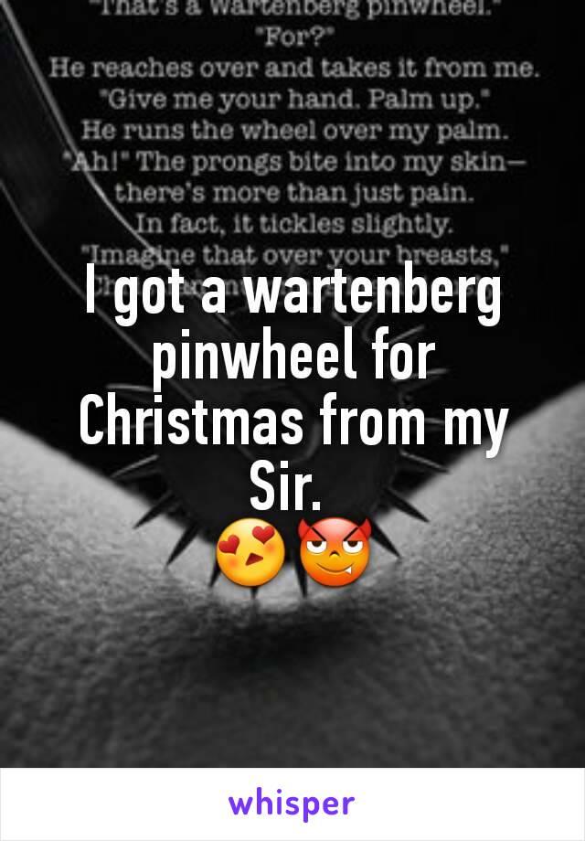 I got a wartenberg pinwheel for Christmas from my Sir.  😍😈