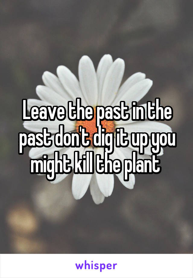 Leave the past in the past don't dig it up you might kill the plant