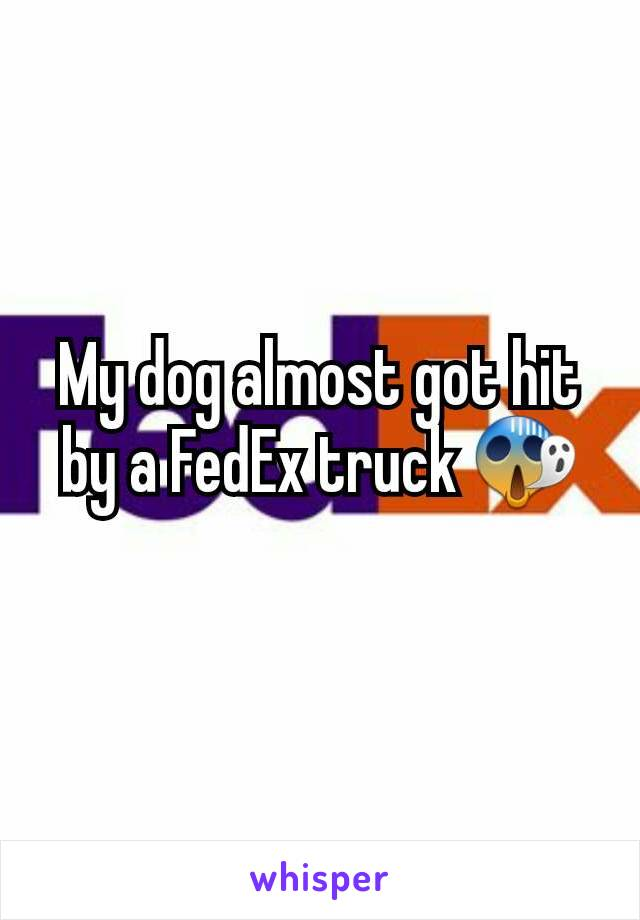 My dog almost got hit by a FedEx truck 😱
