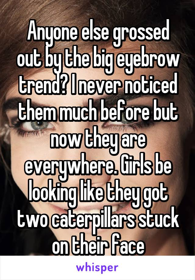 Anyone else grossed out by the big eyebrow trend? I never noticed them much before but now they are everywhere. Girls be looking like they got two caterpillars stuck on their face