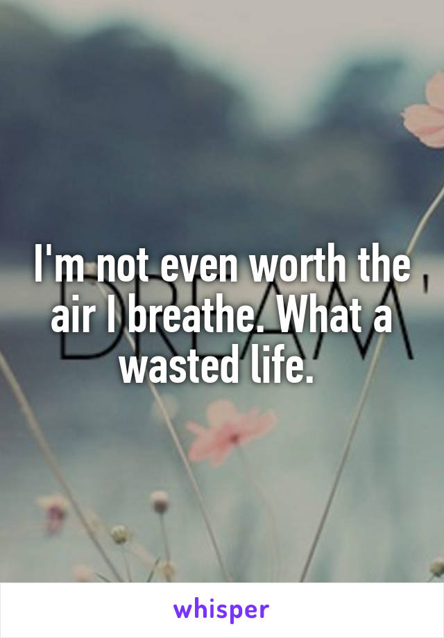 I'm not even worth the air I breathe. What a wasted life.