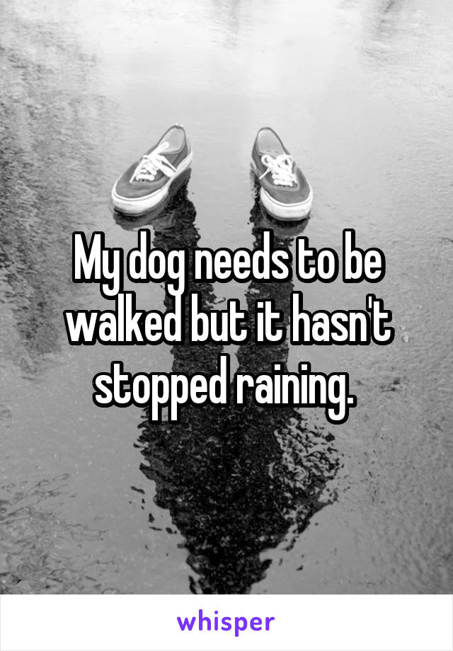 My dog needs to be walked but it hasn't stopped raining.