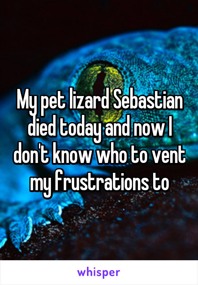 My pet lizard Sebastian died today and now I don't know who to vent my frustrations to
