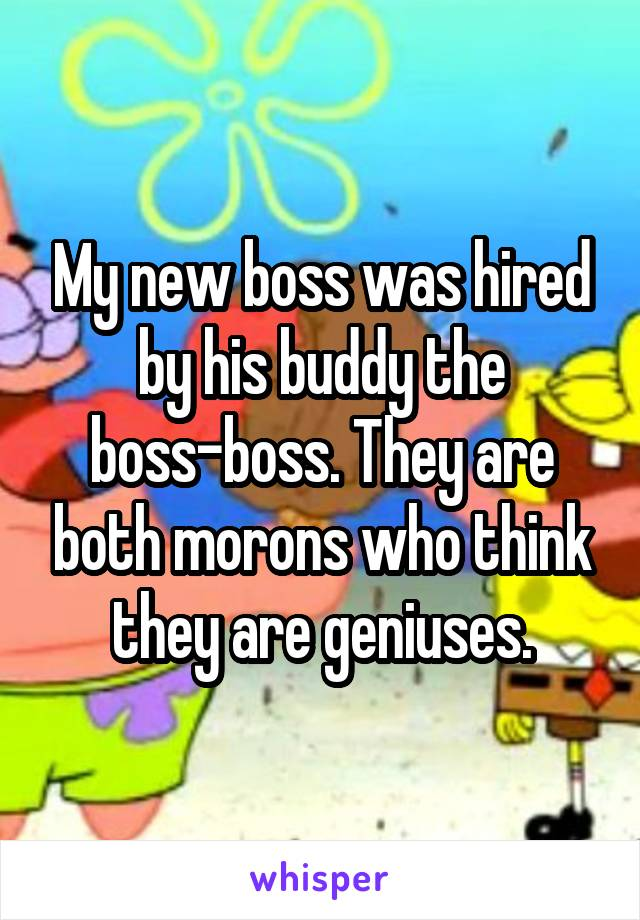 My new boss was hired by his buddy the boss-boss. They are both morons who think they are geniuses.