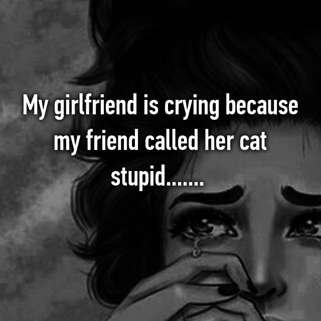 My girlfriend is crying because my friend called her cat stupid.......