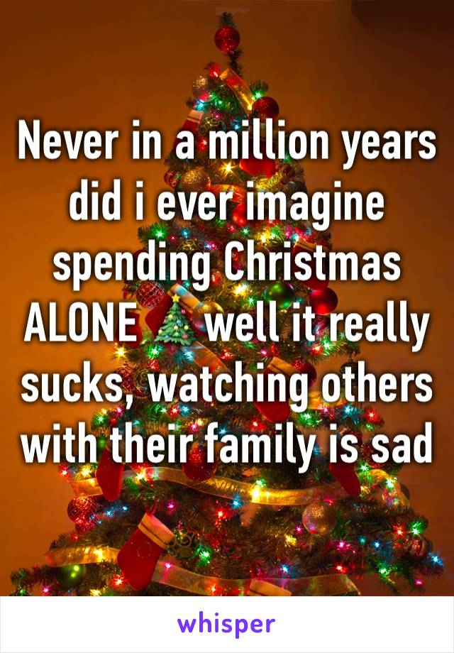 never in a million years did i ever imagine spending christmas alone well it really