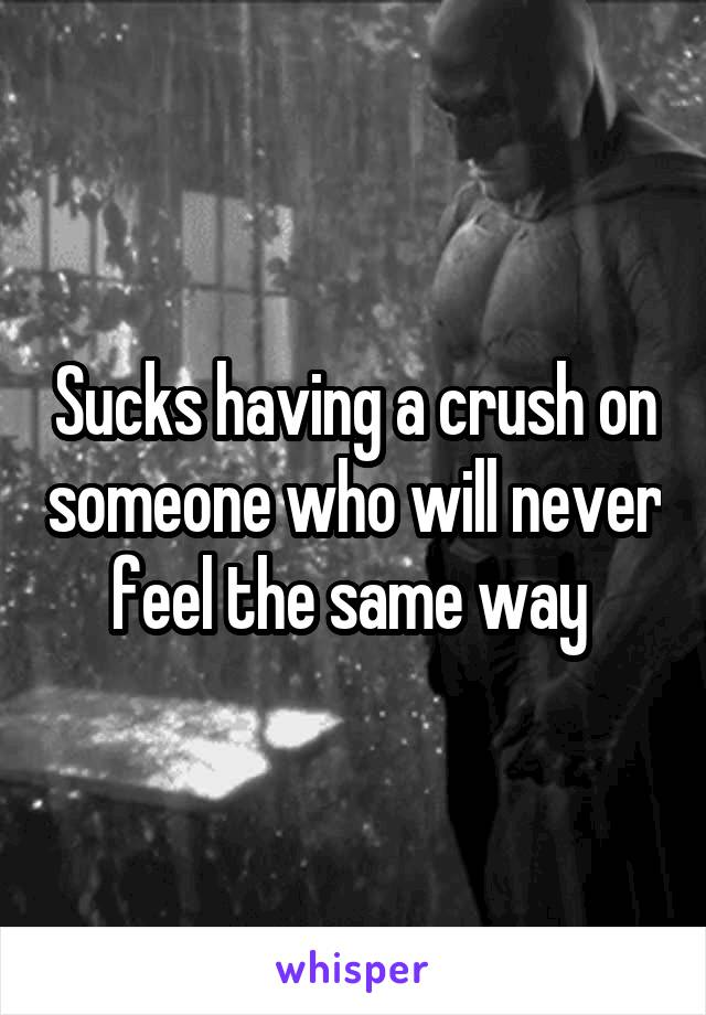 Sucks having a crush on someone who will never feel the same way