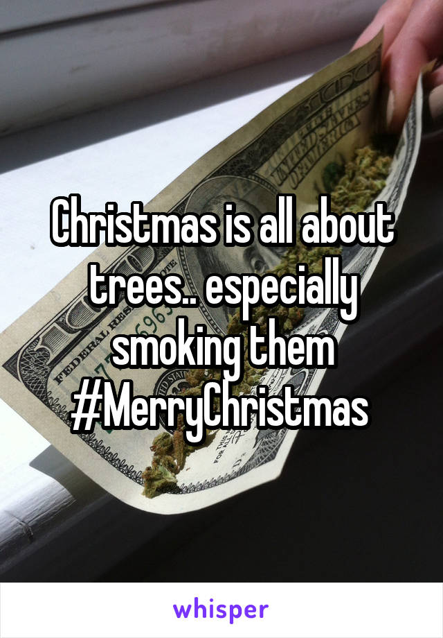 Christmas is all about trees.. especially smoking them #MerryChristmas