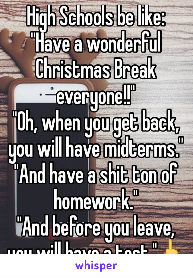 "High Schools be like: ""Have a wonderful Christmas Break everyone!!"" ""Oh, when you get back, you will have midterms."" ""And have a shit ton of homework."" ""And before you leave, you will have a test.""🖕"