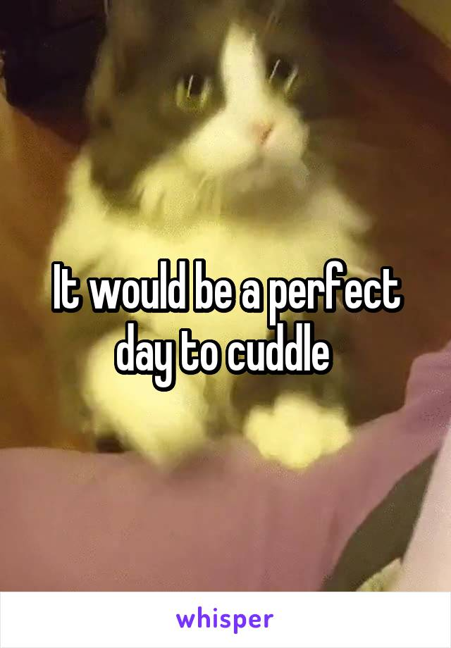 It would be a perfect day to cuddle